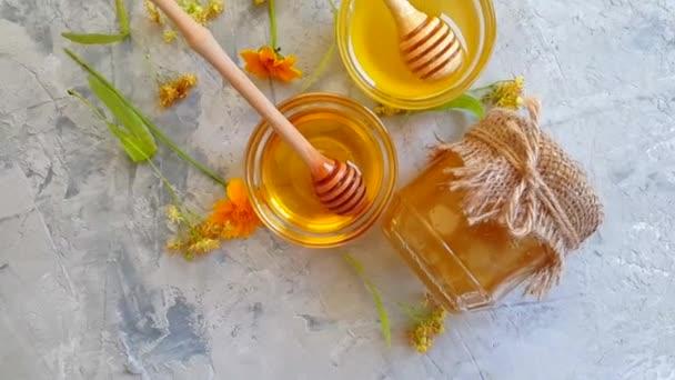 čerstvý Medový květ Calendula na betonových pozadí