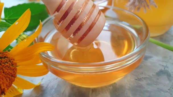 čerstvý med měsíčku Flower, pomalý pohyb