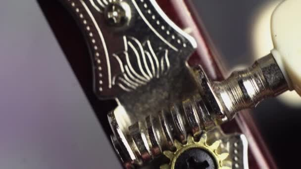 Close up shot of acoustic guitar pegs