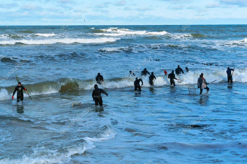 October 28, 2018, the Baltic sea, Kaliningrad oblast, Russia, fishing for amber, people catch amber waves