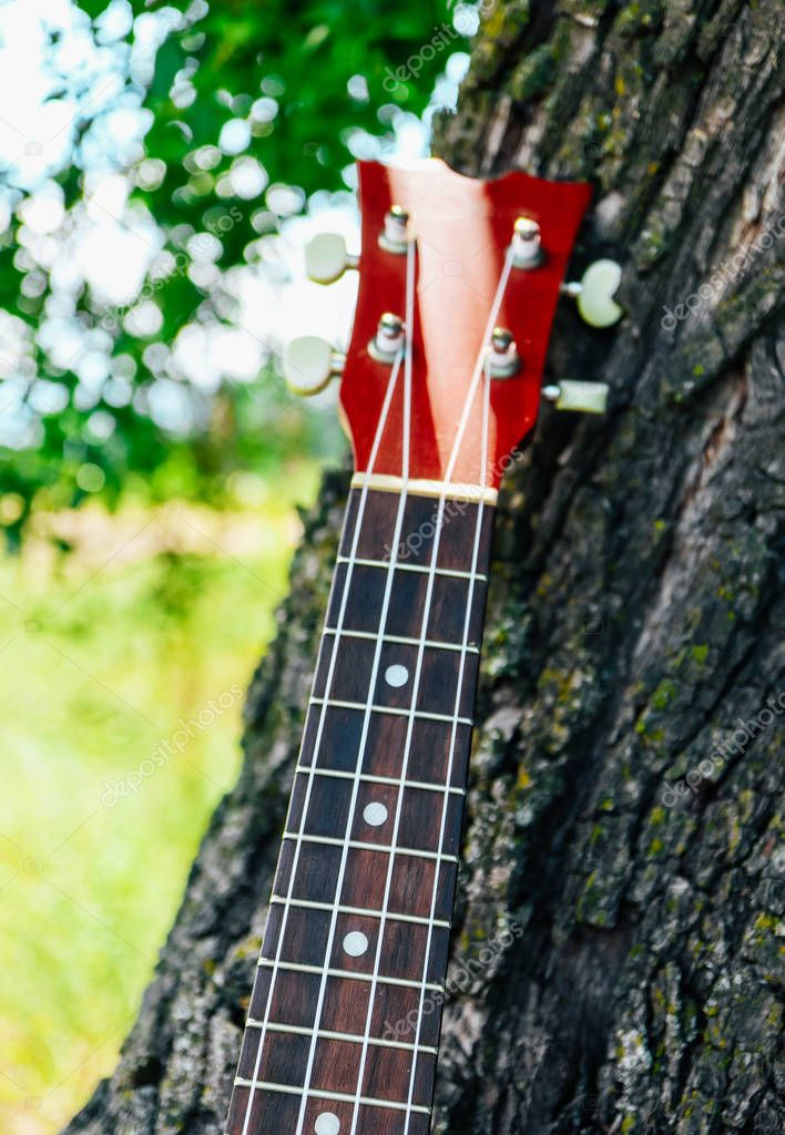 A guitar neck on the forest background. Music and nature concept.