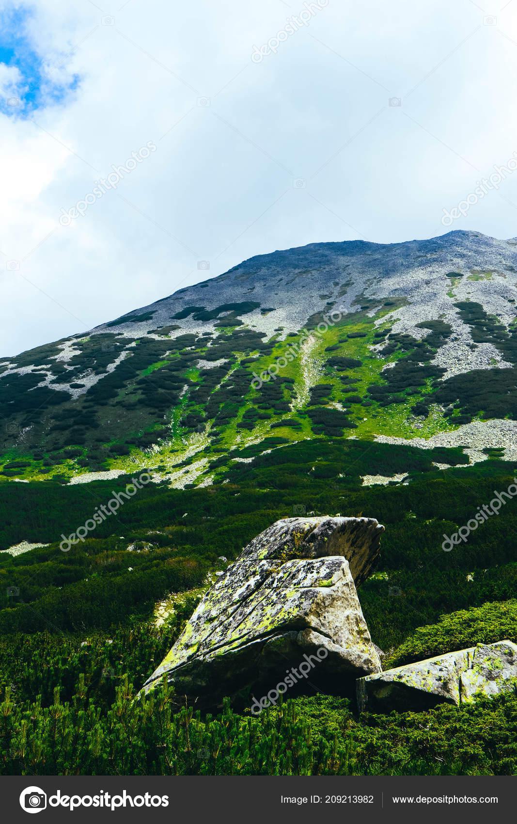 五颜六色的绿苔藓大石头在群山中消失了 神秘森林里的老灰石 — 图库照片#