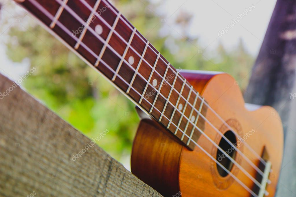 Ukulele guitar at the mountain nature forest background. musical