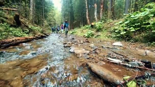 egy csoport utazók a folyón az erdő