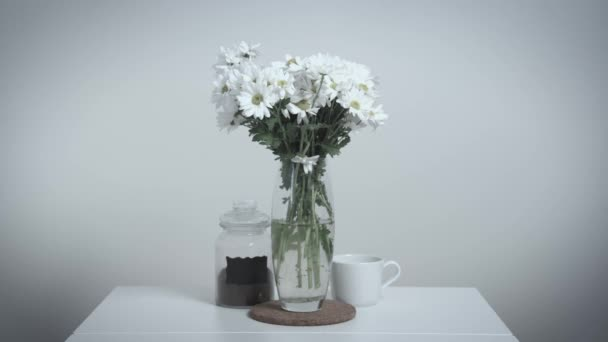 Bouquet of beautiful daisies stands in glass vase on dining table, showing the withering of life, white background. Acceleration of flow of time on example of flowers