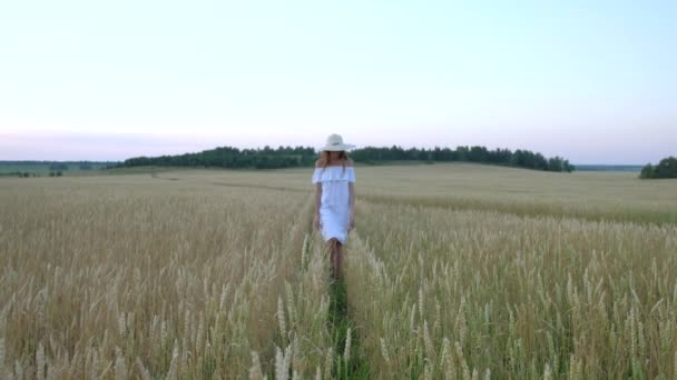 beautiful woman goes to field of ripe golden wheat