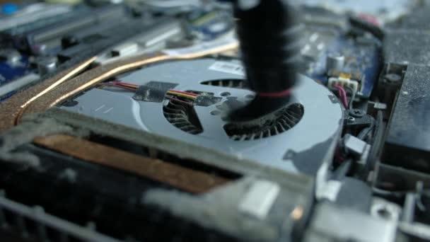 der Servicetechniker reinigt das Innere des Laptops mit Staub und anderem Schmutz.