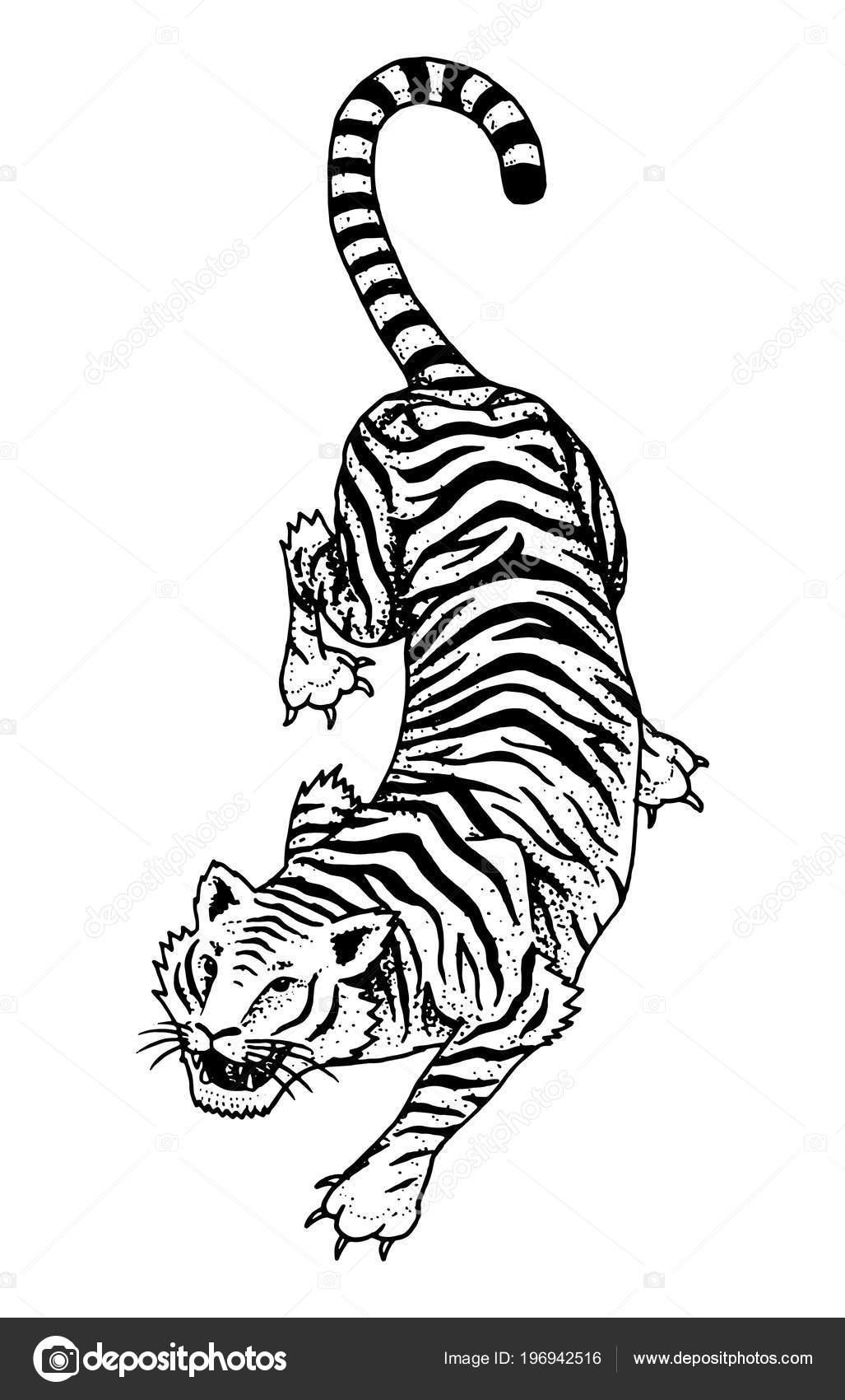 Plantillas Tatuaje Japones Tigre Salvaje Japonés Gato Asiático