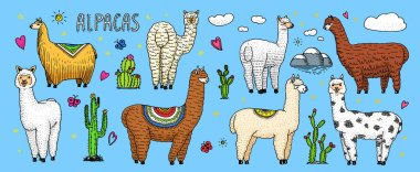 Set of cute Alpaca Llamas or wild guanaco on the background of Cactus and mountain. Funny smiling animals in Peru for cards, posters, invitations, t-shirts. Hand drawn Elements. Engraved sketch.