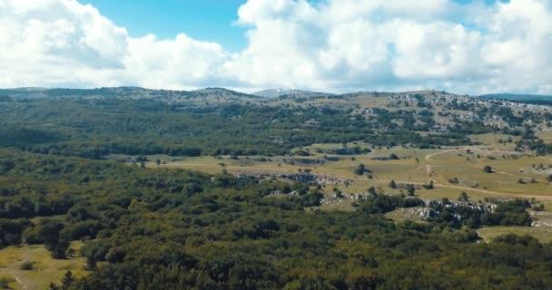 zelené pole na horách. venkovské krajiny v Evropě. pojem ekologie a života. Letecká dron pohled na západ slunce. Krajina s borovicemi a jedle, slunečný den v přírodě