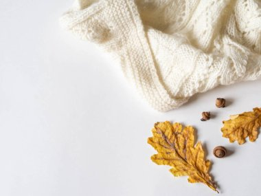 Dry yellow oak leaves and acorns and a warm knitted light plaid. Autumn composition on a white background