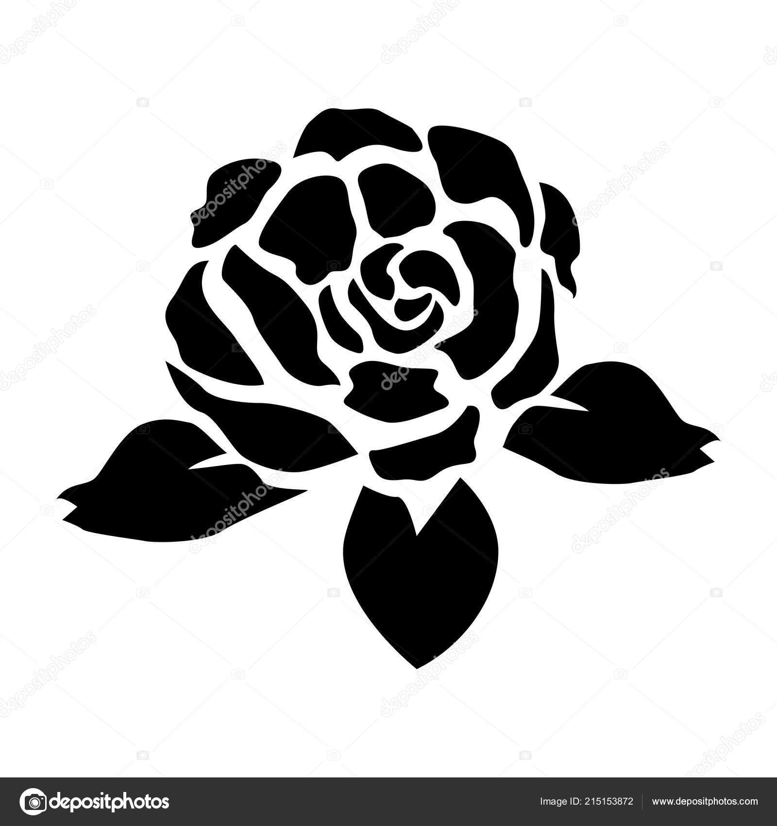 Silhouette Rose Noire Noir Fleur Rose Noir Blanc Isole Sur Image