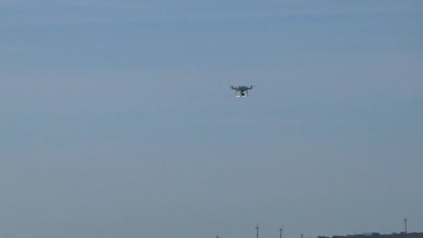 Quadcopter flying next to the seagulls