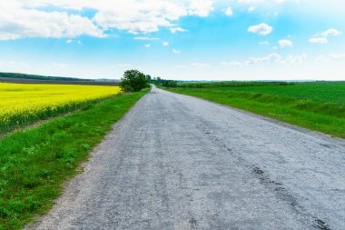 Old asphalt countryside road with green fields under blue sky stock vector