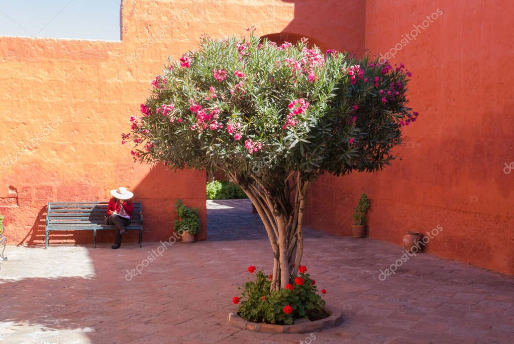 Peru September 2018  Built in 1580 it is the bigger monastery of the world. It is located in the center of the city of Arequipa and, given its vastness, contains within it streets, gardens, cloisters and parks.