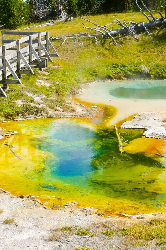 Colorful geothermal puddles Yellowstone Park  in a sunny day