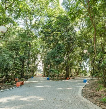Square surrounded by tall trees, some benches to seat on downtown of Londrina city. Bosque Marechal Candido Rondon - Londrina - PR, Brazil.