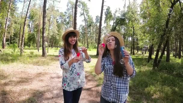 Happy young women have fun and blows soap bubbles in summer, joy and happiness