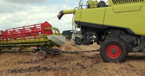 Combine Harvester porta il mietitore alla base della fattoria in un trailer speciale dopo la fine della giornata. Fine del raccolto. Prores, Slow Motion