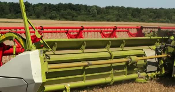 Mietitrebbiatrice. Mietitori. Raccoglitore di colmiere moderno al raccolto di cereali. Prores, Slow Motion