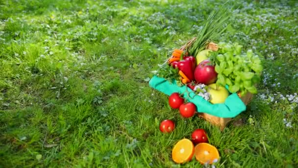 Vegetables And Fruit Lie In A Basket And On A Grass.