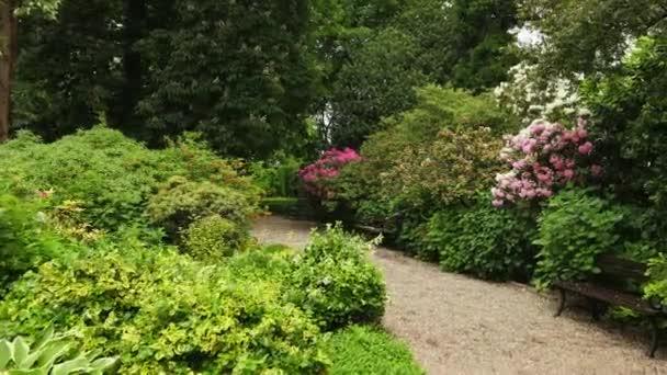 Kamera se pohybovat po cestě, fialová, červená, bílá květiny pokrývající keře a stromy.