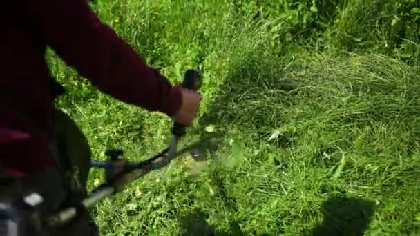 person is a gardener, cuts a high green grass, a gasoline mower, on a sunny day