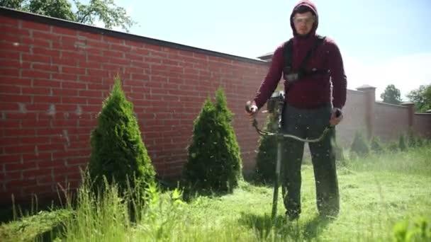 Person mäht grünen Rasenmäher, entlang eines hohen Ziegelzaunes, in der Nähe von Thuja