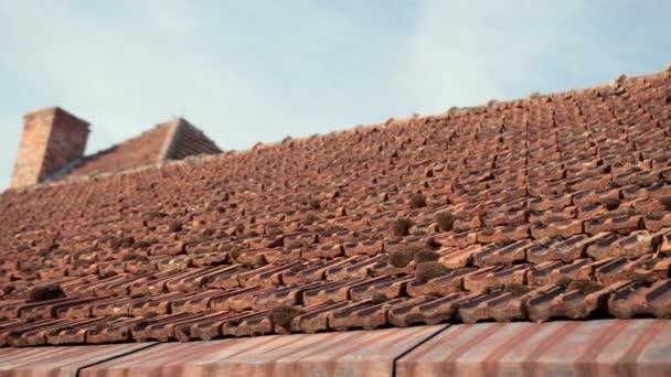 staré střešní dlaždice Rudé, zarostlé mechem, starobylý hrad