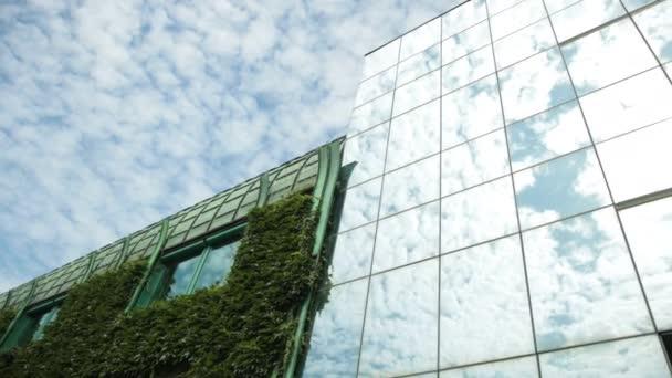 velký dům zcela zarostlý keři, mnoho oken se zelenými rámy