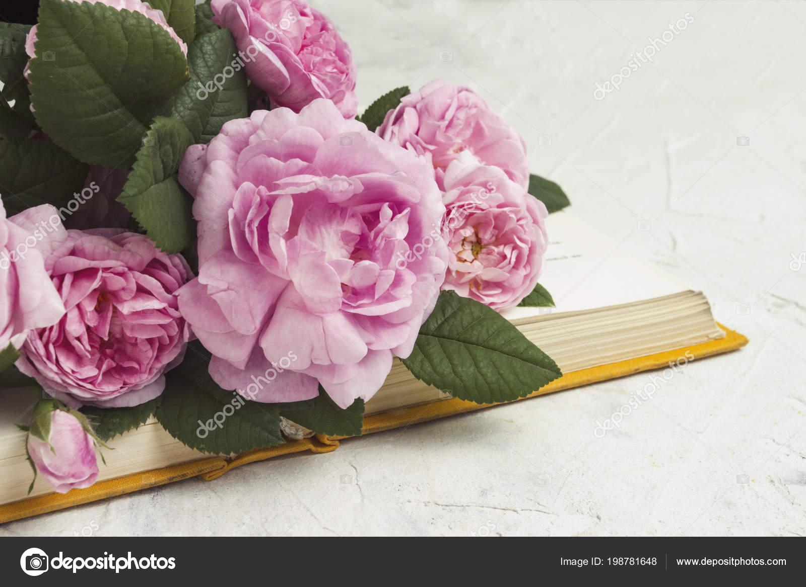 descargar novelas romanticas rosas