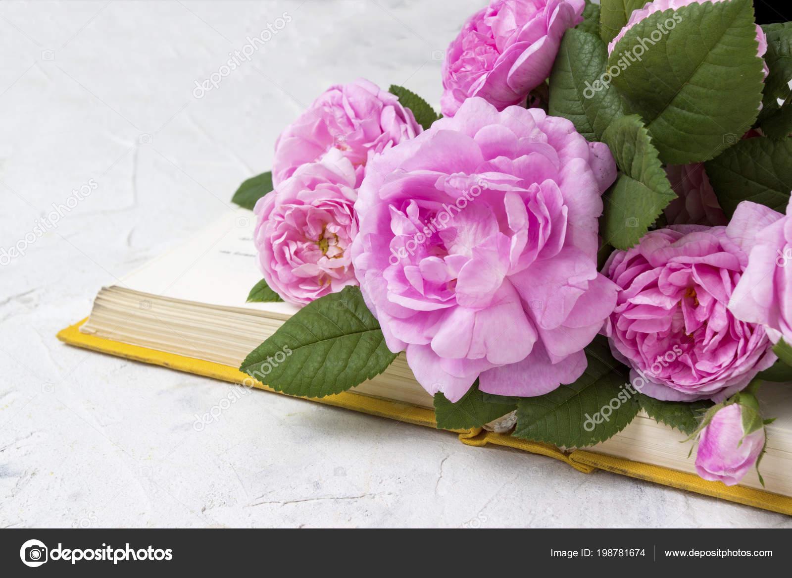 Roses Roses Livre Avec Une Couverture Jaune Sur Fond Clair