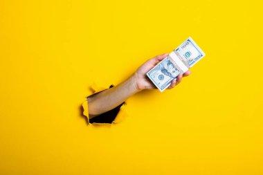 Sarı arka planda 100 dolarlık banknotlar tutan bir kadın..