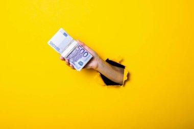 Sarı arka planda 500 avroluk banknotlar tutan bir kadın.