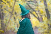 Photo A forest elf, a fairy, a witch in an elf green hat and raincoat. walk in the forest