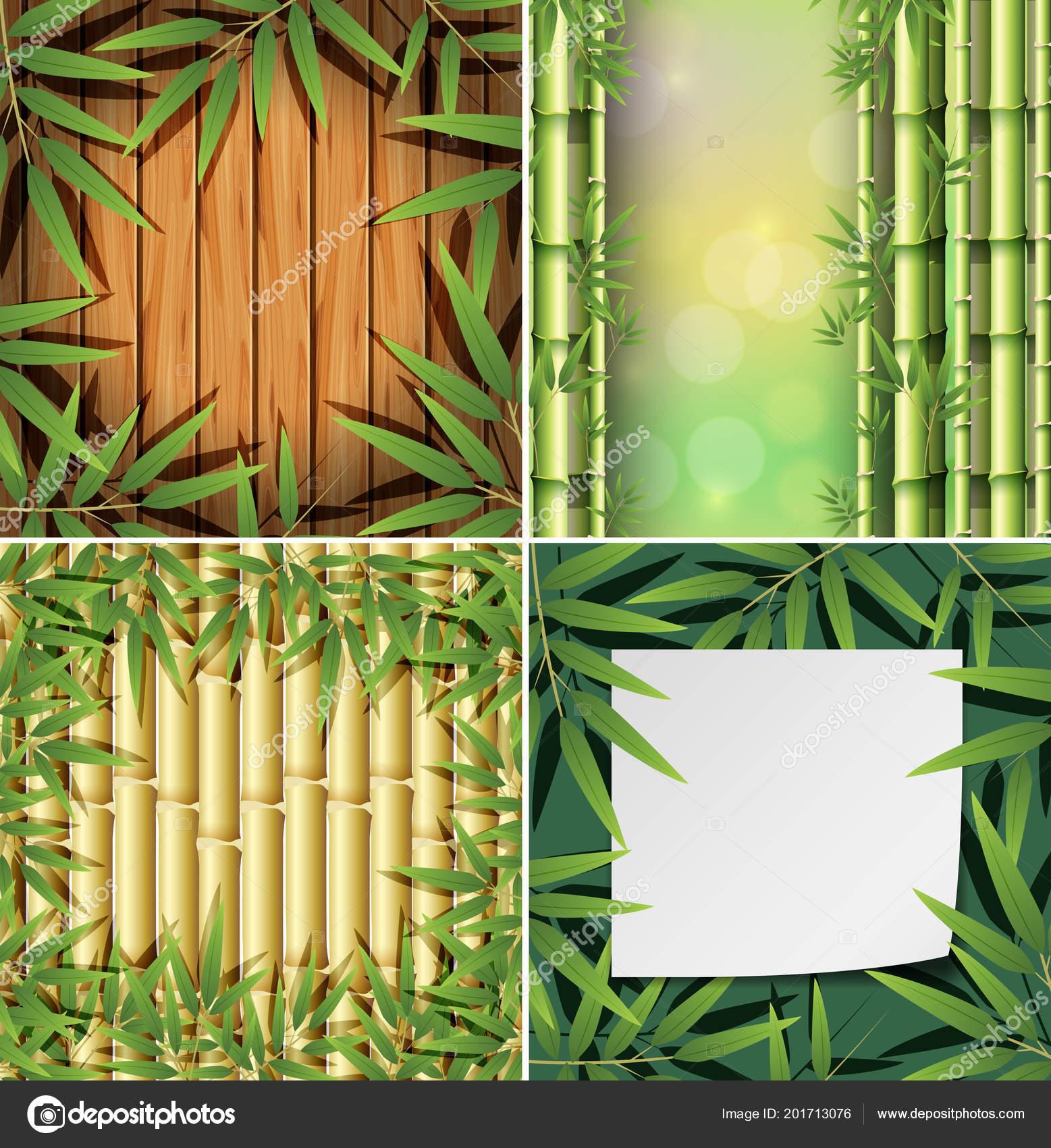 Set Bamboo Background Illustration Stock Vector C Brgfx 201713076