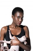Photo beautiful young african american woman in swimsuit holding sphynx cat and looking at camera isolated on white