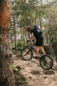 Fotografie sportovní mladé zkušební motorkářské jízdě v borovém lese