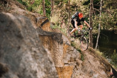 young trial biker riding downhill outdoors in pine forest
