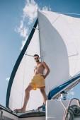 alacsony, szög, Kilátás félmeztelen izmos ember állva yacht úszás bőrönd