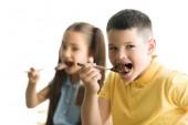 Fotografie Schwester und Bruder, die Schokolade in der Küche