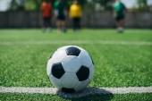 Fotografie Selektivní fokus fotbalové míče a hráči na zelené fotbalové hřiště