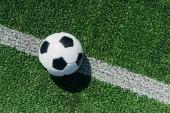 pohled shora na fotbalový míč na zelené trávě s bílou linkou