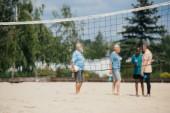 Selektivní fokus čisté a smíšené rasy dědků s volejbalový míč na písečné pláži