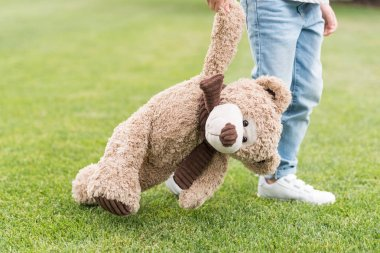 cropped shot of child holding teddy bear while standing on green lawn
