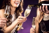 cropped shot of happy young friends drinking champagne