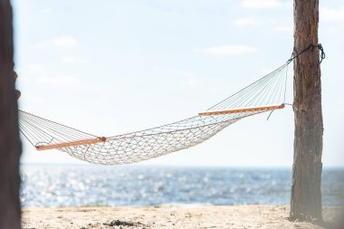 hammock hanging between two trees on sandy beach near the sea