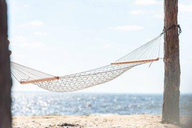 hammock hanging between two trees on sandy beach near the sea