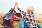 Heckansicht des jungen Frauen huckepack auf Freunde und geben hohe fünf in Blumenfeld