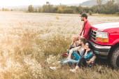 Seitenansicht einer Gruppe junger Autofahrer, die auf einem Blumenfeld sitzen und sich auf einen Oldtimer-LKW zurücklehnen
